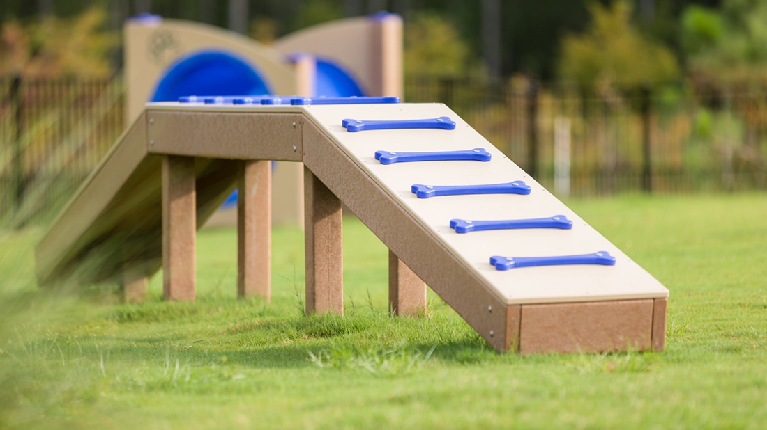 Agility Ramp for Dogs